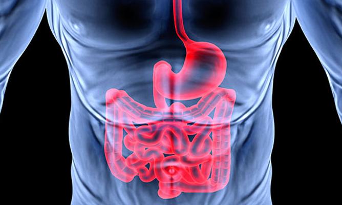 14-remedios-caseros-naturales-para-las-lombrices-intestinales-que-funcionan