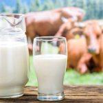 Cuántas calorías en diferentes tipos de leche