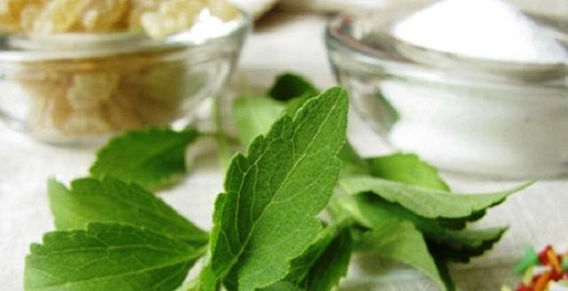 Efectos secundarios de Stevia que debes saber