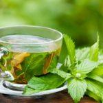 Los mejores tés de hierbas que alivian el estreñimiento