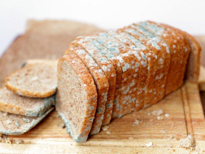 Qué sucede si accidentalmente comes pan mohoso
