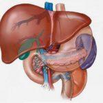 Cómo desintoxicar el hígado naturalmente en casa