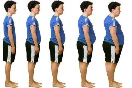 escalas-de-peso-corporal-precisas