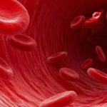 Alto conteo de glóbulos rojos síntomas causas y tratamientos