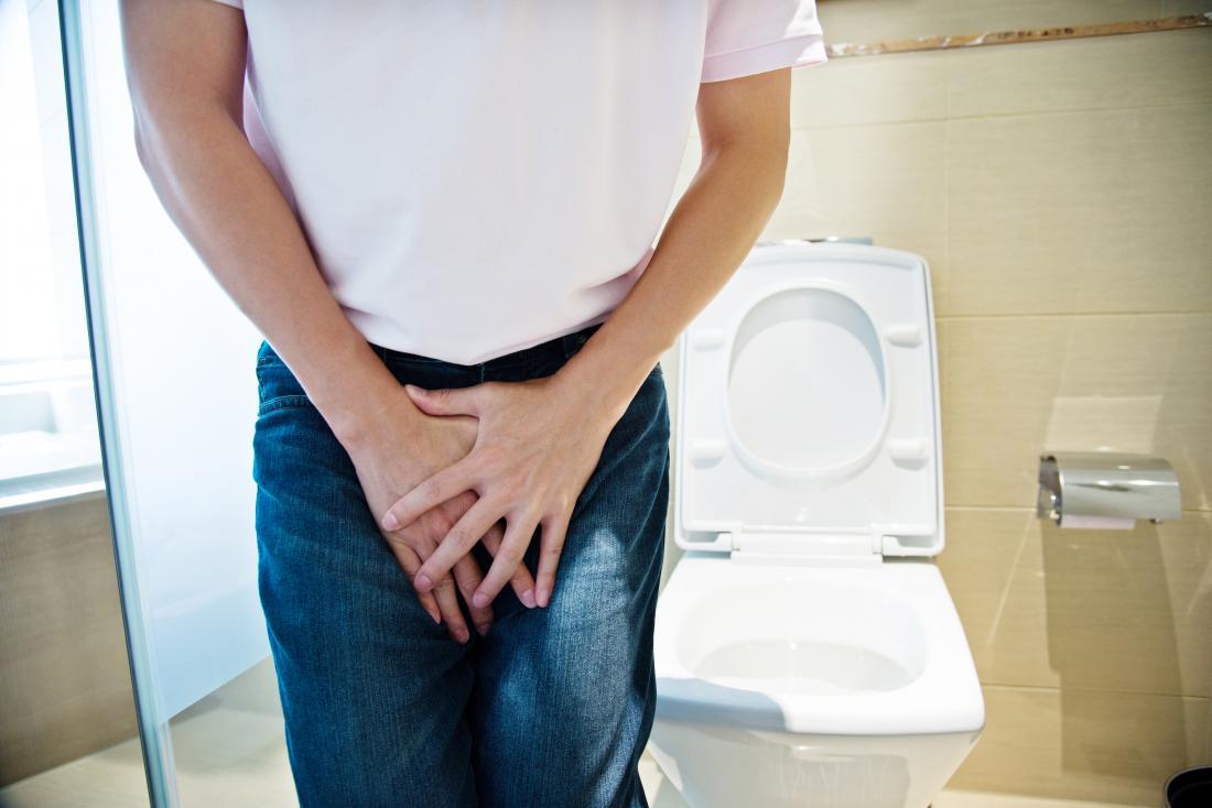 Riñones Urinario