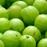 10-beneficios-para-la-salud-de-la-piel-de-grosella-espinosa