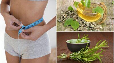 10-te-de-hierbas-saludables-para-agregar-a-su-dieta