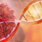 5-mitos-comunes-sobre-el-cancer-desacreditados