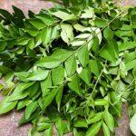 beneficios-para-la-salud-hojas-de-curry