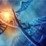 beneficios-y-riesgos-de-la-terapia-con-celulas-madre