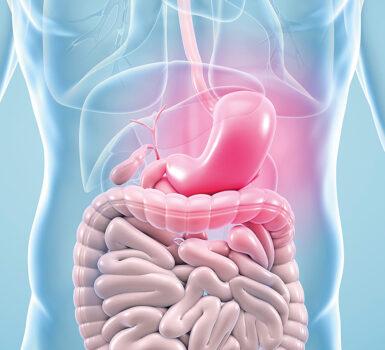 el-reflujo-biliar-causa-sintomas-tratamientos-y-remedios