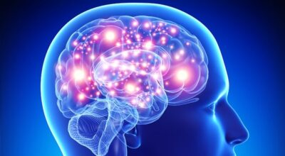 que-causa-la-enfermedad-de-alzheimer-sintomas-tratamiento