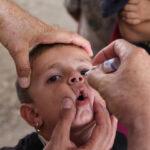 riesgos-vacunas-contra-la-poliomielitis-contaminadas-de-tipo-2