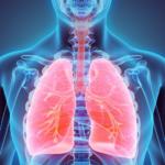 todo-sobre-la-contaminacion-la-salud-pulmonar